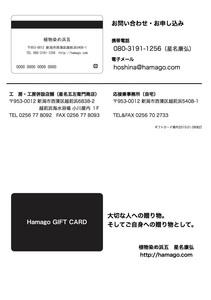 hamagogiftcard20160108print1.jpg